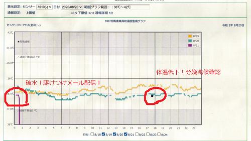 体温変化グラフ